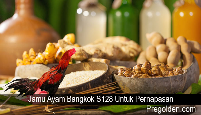 Jamu Ayam Bangkok S128 Untuk Pernapasan